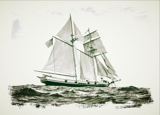 Baltimore Clipper - Info